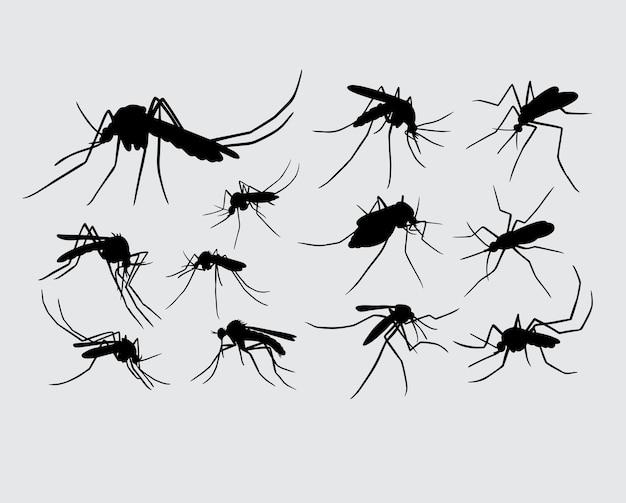 蚊の昆虫の動物のシルエット