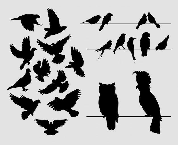 鳩鳥の動物のシルエット