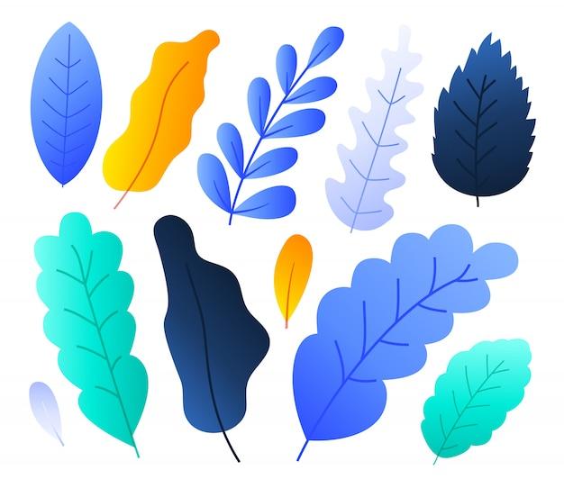 Плоские абстрактные красочные листья леса установили иллюстрацию вектора. цветочные элементы для лета, весна осень цветочный дизайн. рисованные растения