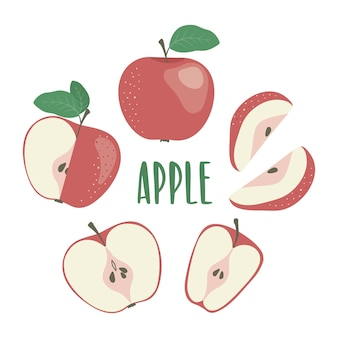 レッドリンゴの手描きのイラストがレターで描かれています。