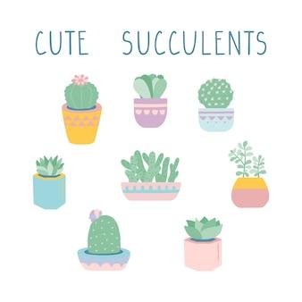 Векторные иллюстрации суккуленты и кактусы.
