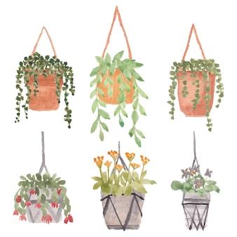 鍋水彩イラストセットで植物をぶら下げ