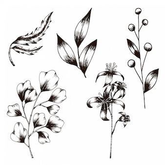 花と葉のビンテージスタイルコレクションの手描きのスケッチ