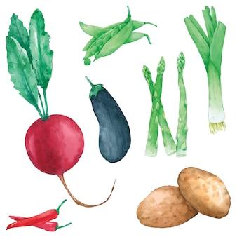 野菜は水彩でハンドペイントを設定