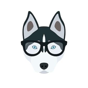 眼鏡のハスキー。