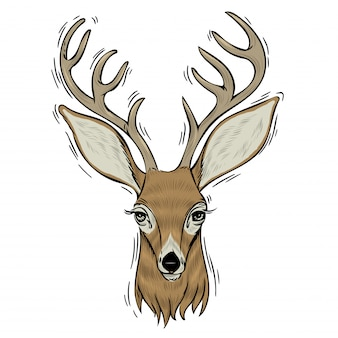鹿の手描きの頭。