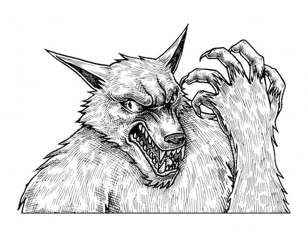 怒っている狼、手描きイラスト