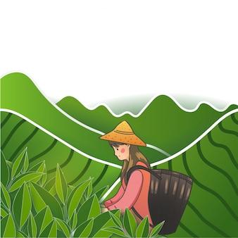 Девушка в зеленом чайном саду.