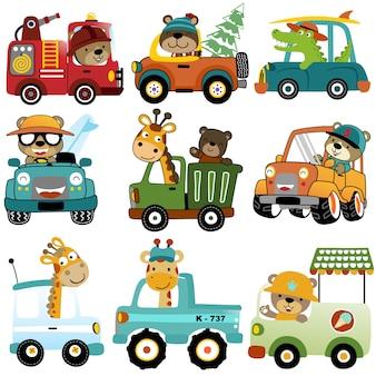 Векторный набор забавных водителей автомобилей