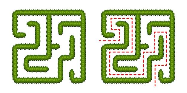 子供向けの教育ロジックゲームブッシュラビリンス。正しい方法を見つけます。白い背景で隔離された単純な正方形の迷路。ソリューションで。ベクトルイラスト。