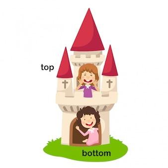 Напротив слов снизу и сверху векторные иллюстрации