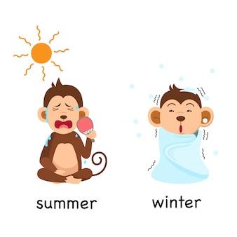 夏と冬の反対のベクトル図