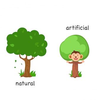 自然と人工的なベクトルのイラストの反対