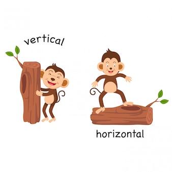 垂直および水平ベクトルの反対側の図