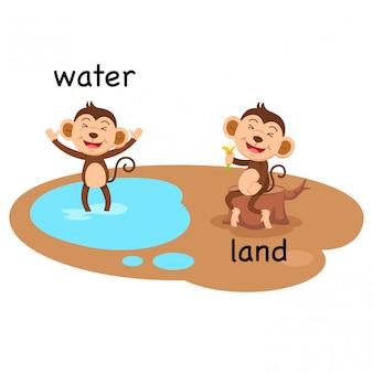 水と土地のベクトルの反対のイラスト