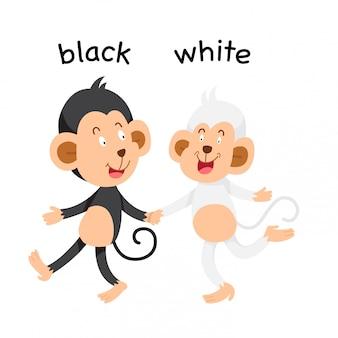 黒と白の反対のイラスト