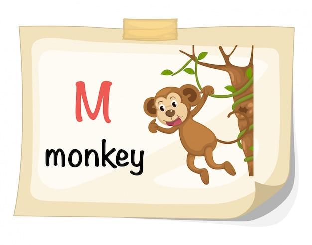 Животное алфавит буква м для вектора иллюстрации обезьяны