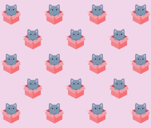ボックスパターンの子猫