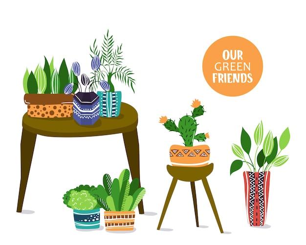 Композиция с комнатными комнатными растениями или цветами