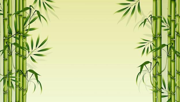 竹の背景。緑の花のイラスト。