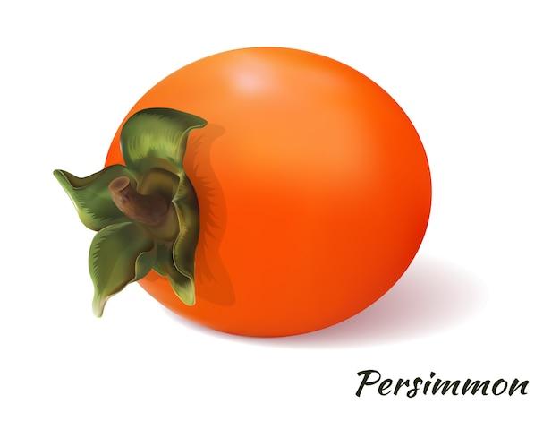 白い背景の上の柿