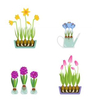 バレンタインデーのための早春の庭の花