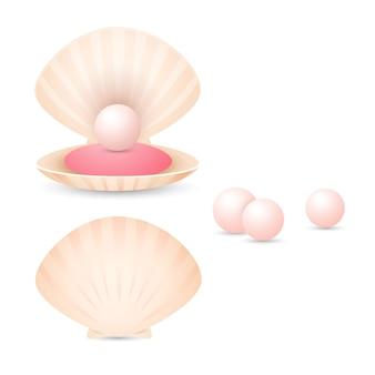 Светло-розовая жемчужина в раковине