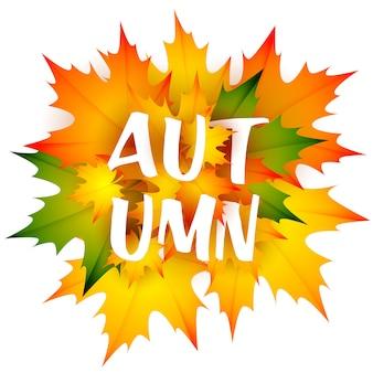 葉の束と秋の季節のリーフレット