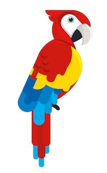 Красочная птица-какаду в дикой природе