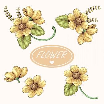 花の手描きの黄色い花