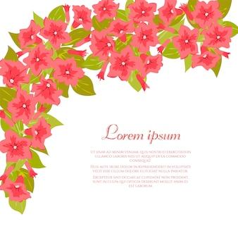白地にピンクのビンテージ花