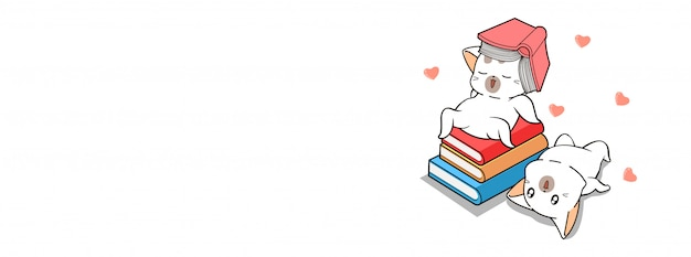 本と愛らしい猫
