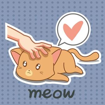 誰かが素敵な猫に触れています。