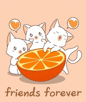 Очаровательные кошачьи персонажи и апельсин