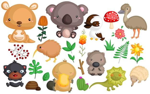 Животное австралии