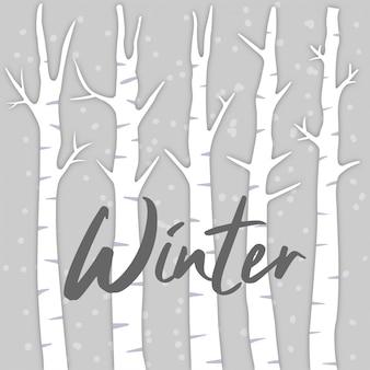 白樺の木の背景と冬