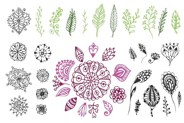 ビッグネイチャーの手描きコレクション。落書き花と葉のかわいいベクトル図