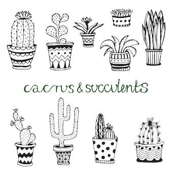 手のひらには多肉植物が描かれています。鉢にフラワーを落とす。かわいい家のインテリアの植物とベクトル植物を設定します。