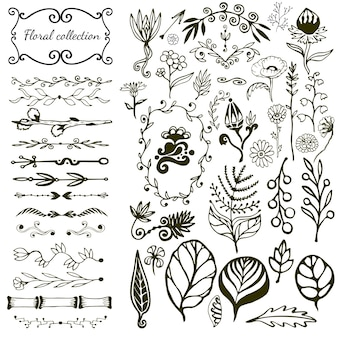 野生の花、葉、渦巻き、国境と手描きの花の大きなセット。
