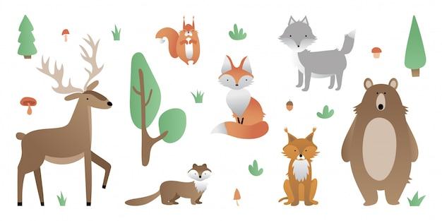 森林の動物。クマ、オオカミ、キツネ、シカ、リンカ、リス、マルテン。木、茂み、草、キノコ、ドングリ。