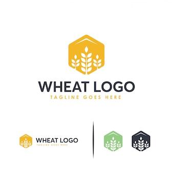 穀物小麦のロゴのコンセプト