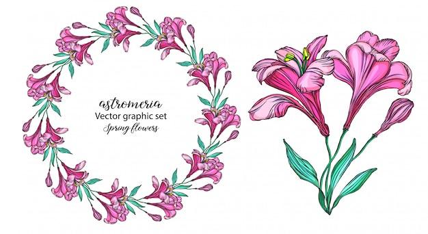 ベクトルアルストロメリアの花のセット
