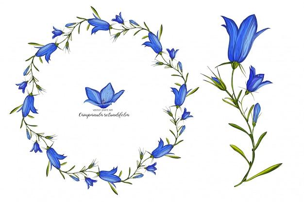ベクトル花鐘花セット。花植物セット。