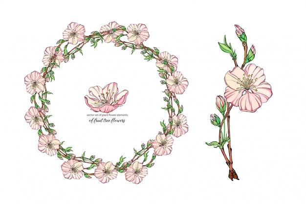 Набор цветов с нежными цветами, цветущая ветка