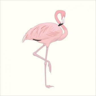 片足にピンクのフラミンゴ