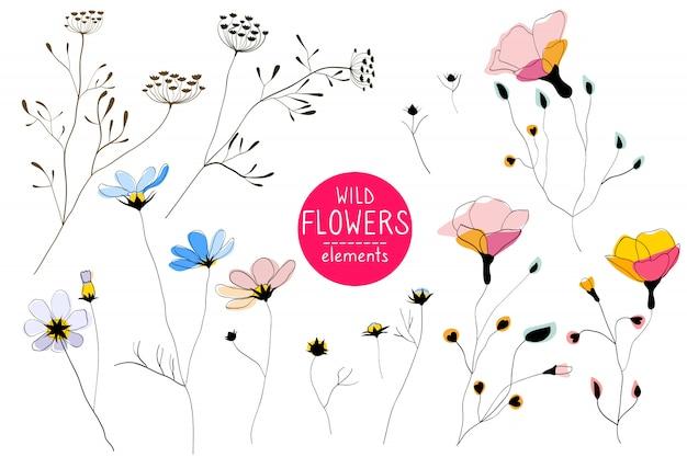 野生の花、ラインアートの要素