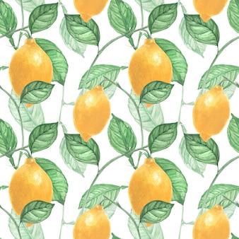 レモンフルーツと葉のシームレスパターン