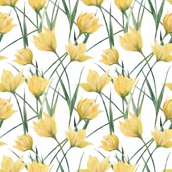 Цветочный бесшовный узор с дикими тюльпанами