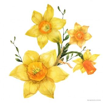 水仙の花と黄色の春花の花束