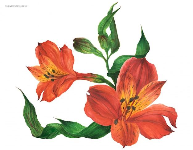 Букет из корсажей с красными цветами перуанской лилии